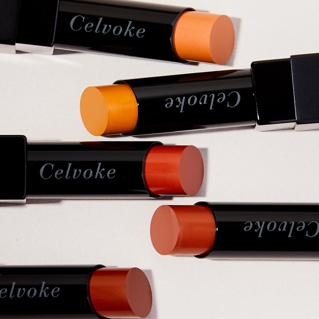 Celvoke(セルヴォーク)『リベレイティッド マット リップス 04 ブリックブラウン』の使用感をレポに関する画像12