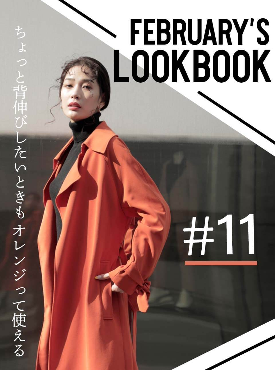 FEBRUARY'S LOOKBOOK vol.11